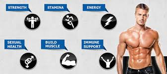 10 Ways to Elevate Your Testosterone LevelsNaturally!